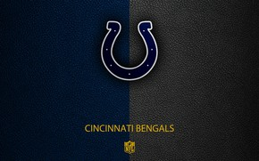 Картинка wallpaper, sport, logo, NFL, Indianapolis Colt