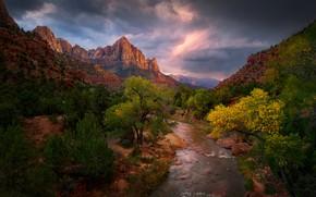 Картинка небо, облака, деревья, горы, тучи, ручей, камни, скалы, каньон, Юта, США, Zion National Park, Зайон
