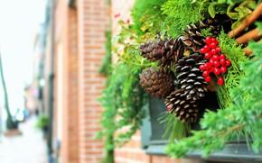 Картинка зима, ветки, город, дом, ягоды, стена, праздник, улица, Рождество, Новый год, хвоя, шишки, боке, новогодние …