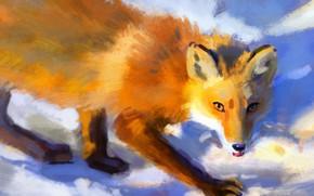 Картинка зима, снег, лиса, крадется, by Meorow