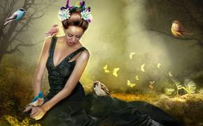 Картинка трава, девушка, птицы, поляна, венок, фотоарт
