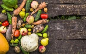Картинка осень, урожай, Овощи