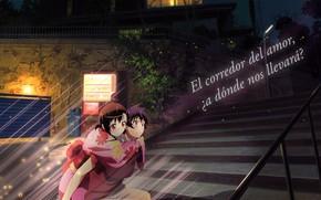 Картинка девушка, ночь, романтика, аниме, арт, парень, двое, Nisekoi, Притворная любовь