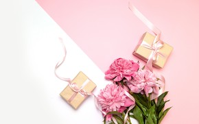 Картинка ленты, фон, букет, подарки, розовые, Пионы