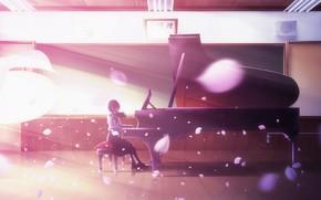 Картинка лепестки, школьница, пианино
