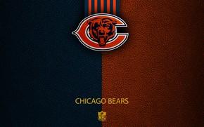 Картинка wallpaper, sport, logo, NFL, Chicago Bears