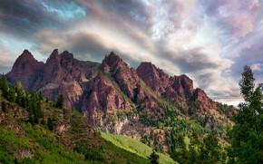 Картинка лес, небо, солнце, облака, деревья, горы, скалы, ущелье, США, Colorado, Sievers Mountain