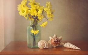 Картинка цветы, букет, желтые, ракушки, натюрморт