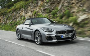 Картинка серый, движение, растительность, BMW, склон, родстер, BMW Z4, M40i, Z4, 2019, G29