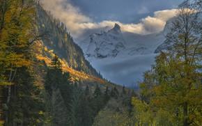 Картинка осень, облака, пейзаж, горы, природа, леса, Кавказ, Домбай, Владимир Рябков
