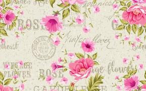 Картинка цветы, фон, розы, винтаж, композиция