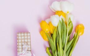 Картинка цветы, фон, букет, желтые, тюльпаны, белые