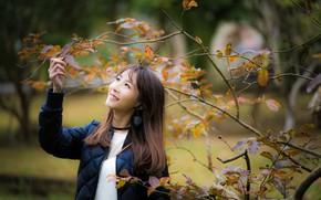 Картинка листья, девушка, ветки, улыбка, азиатка, милашка, боке
