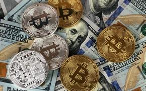 Картинка размытие, доллар, монеты, dollar, bitcoin, биткоин, btc