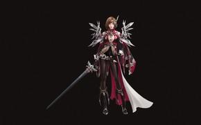 Картинка Girl, Fantasy, Art, Style, Illustration, Minimalism, Sword, Armor, Character, Muni Choi, Red knight