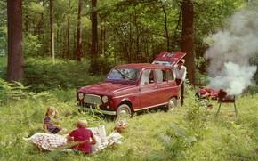 Картинка forest, picnic, 1961-1967, Renault 4 L