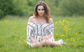 Картинка трава, взгляд, девушка, модель, волосы, платье, луг, плечи, боке, коленки, Millie