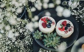 Картинка ягоды, пирожное, крем, десерт