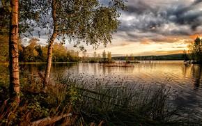 Картинка небо, трава, тучи, озеро, фото
