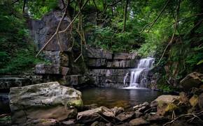 Картинка лес, камни, водопад