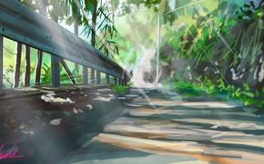 Картинка дорога, природа, ограждение