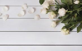 Картинка цветы, розы, лепестки, white, белые, wood, flowers, petals, roses