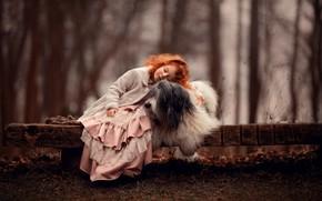 Картинка настроение, собака, дружба, девочка, рыжая, друзья, рыжеволосая