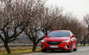 Картинка деревья, красный, Insignia, Opel, Insignia GSi