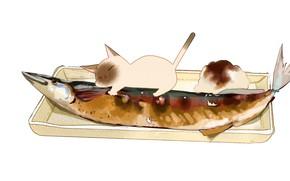 Картинка белый фон, лежит, блюдо, гарнир, сиамский кот, кайфует, рыба запеченная