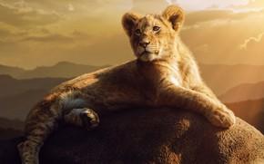 Картинка камень, stone, львёнок, Jackson Carvalho, lionet