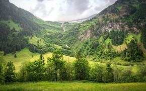 Картинка лес, небо, горы, природа, Sven Lachmann