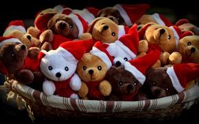 Картинка свет, улыбка, праздник, корзина, новый год, медведи, команда, черный фон, компания, медвежата, мишки, тедди, много, …