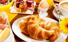Картинка цветок, стол, яйцо, кофе, завтрак, тарелка, чашка, мёд, блюдца, варенье, круассаны, мюсли, ложки, салфетки
