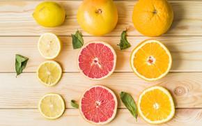 Картинка лимон, апельсин, цитрус, lemon, wood, грейпфрут, orange, grapefruit