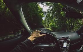 Картинка дорога, лес, рука, руль, mazda, навигатор