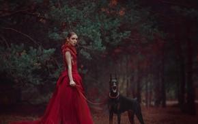Картинка лес, девушка, ветки, стиль, собака, платье, красное платье, сосна, доберман, Анастасия Добровольская