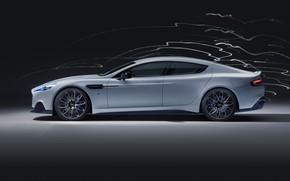 Картинка Aston Martin, Rapide, вид сбоку, 2019, Rapide E