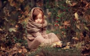 Обои осень, лес, листья, природа, ягоды, куст, платье, плоды, шиповник, девочка, ребёнок, Darya Stepanova, снуд