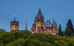 Картинка деревья, замок, Германия, Germany, Северный Рейн-Вестфалия, North Rhine-Westphalia, Замок Драхенбург, Schloss Drachenburg, Drachenburg Castle