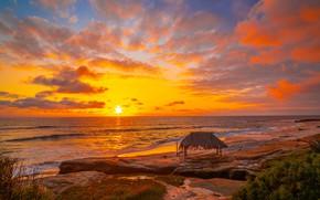 Картинка море, пляж, небо, солнце, облака, закат, побережье, горизонт, Калифорния, США, La Jolla, Windansea Beach