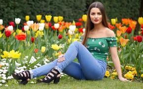 Картинка цветы, взгляд, красотка, тюльпаны, джинсы, Leyla, длинноволосая, секси, газон