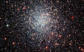 Картинка Globular cluster, Part of the Large Magellanic Cloud, NGC 1783, Dorado constellation