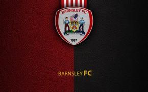 Картинка wallpaper, sport, logo, football, English Premier League, Barnsley