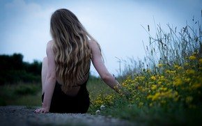 Картинка трава, девушка, цветы, волосы, спина