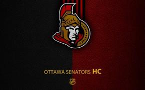 Картинка wallpaper, sport, logo, NHL, hockey, Ottawa Senators