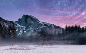 Картинка Yosemite, ПРИРОДА, ЗИМА, ТУМАН