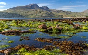 Картинка Scotland, Isle of Mull coastline, Killunaig