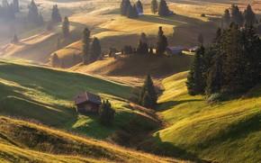 Картинка Italy, Dolomites, Alpe di Siusi