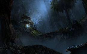 Картинка Ночь, Деревья, Лес, Дом, House, Арт, Art, Night, Forest, Trees, Lim Kheng Wei, by Lim …