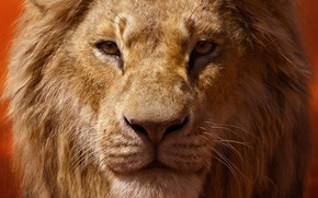 Картинка взгляд, лев, грива, The Lion King, Король лев, 2019